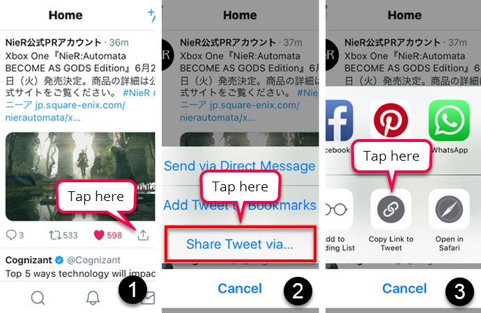 This image shows the three steps you need to follow to get the link to a tweet on mobile